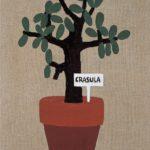 Crasula, 2004