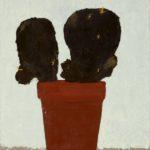 Kaktus, 2004