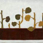 Pelargonie, 2004