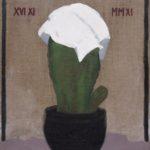 Kaktus z chusteczką, 2008